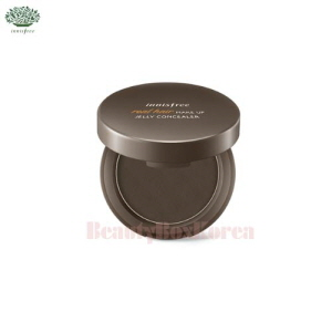 INNISFREE Real Hair Make Up Jelly Concealer 9.5g